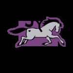 chariot_joyRide_logo-