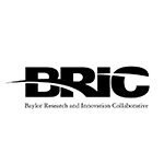 BRIC logo TN